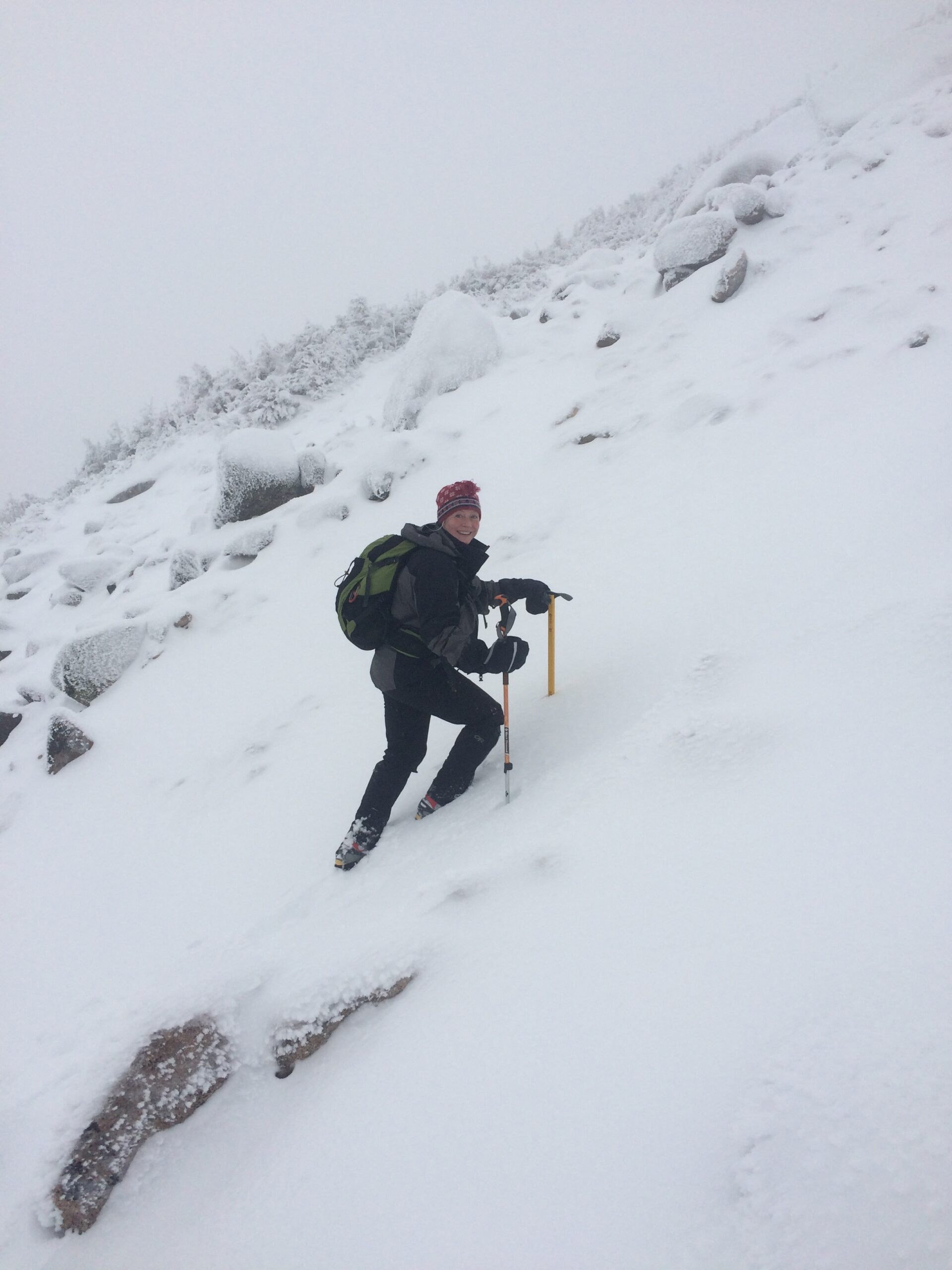 Onward through the snowfields